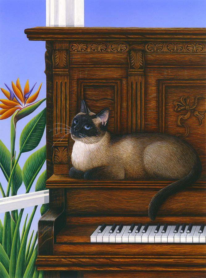 Cat Missy on Piano Painting - Cat Missy on Piano Fine Art Print
