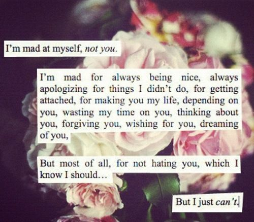 I Am Mad At Myself Not You