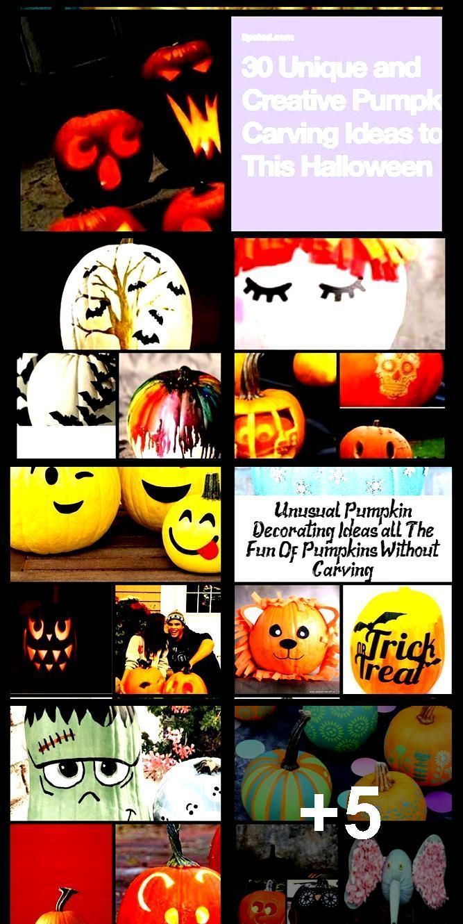 Amazing Pumpkin Painting Ideas & Other No Carve Pumpkin Decorating Ideas #pumkin... #pumpkinpaintingideascreative Amazing Pumpkin Painting Ideas & Other No Carve Pumpkin Decorating Ideas #pumkin...,  #Amazing #Carve #Decorating #Ideas #painting #pumkin #Pumpkin #pumpkinpaintingideascreative Amazing Pumpkin Painting Ideas & Other No Carve Pumpkin Decorating Ideas #pumkin... #pumpkinpaintingideascreative Amazing Pumpkin Painting Ideas & Other No Carve Pumpkin Decorating Ideas #pumkin...,  #Amazing #pumpkinpaintingideascreative