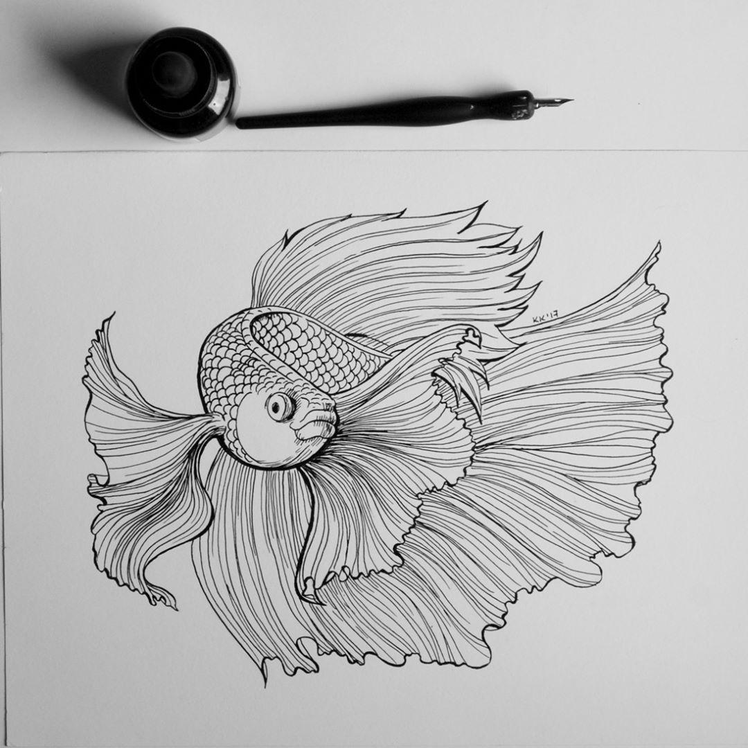 Day 4 Of Inktober Underwater Siamese Fighting Fish Or Betta Ink And Pen Inktober2017 Ink Inkan Beta Fish Drawing Fish Drawings Sea Creatures Drawing