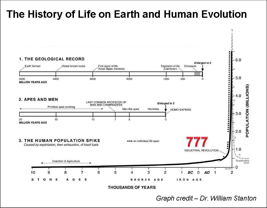 timeline of human history - Google Search | Social Studies ...