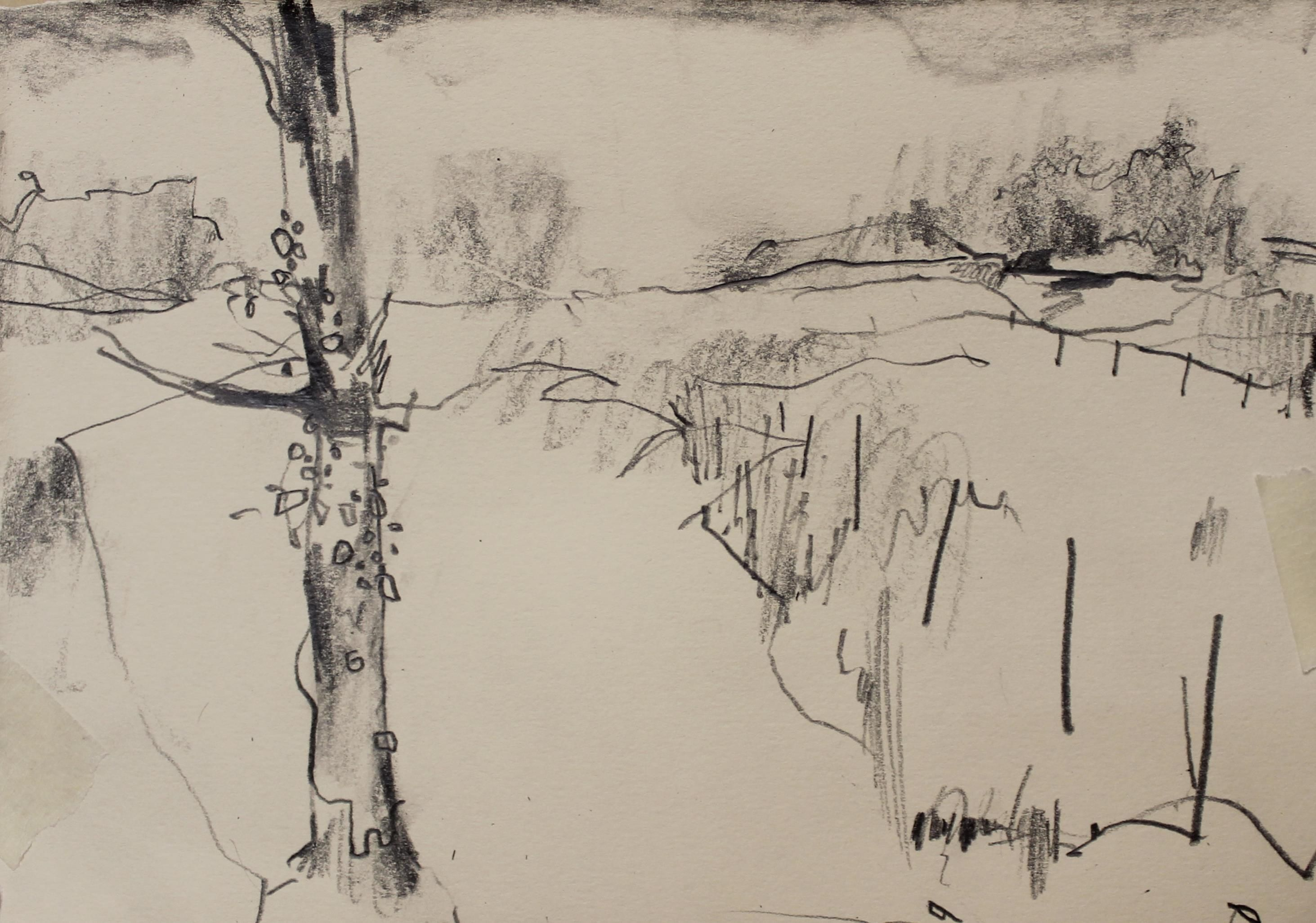 Drawing On A Wet February Morning A Missy And Damp Cwm Pennant Valley Landscape Drawings Landscape Sketch Drawings