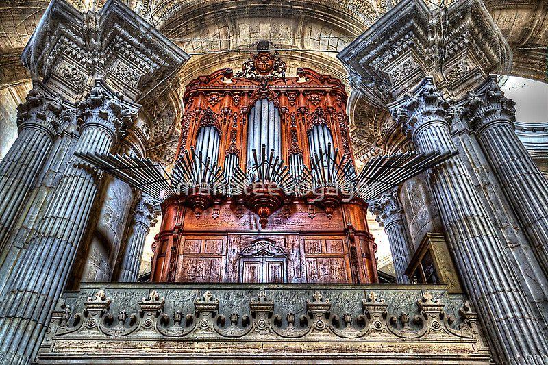 The Organ Pipes