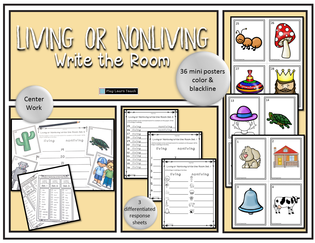 Living Or Nonliving Write The Room Life Skills Curriculum Teaching Resources Kindergarten Practice [ 816 x 1056 Pixel ]