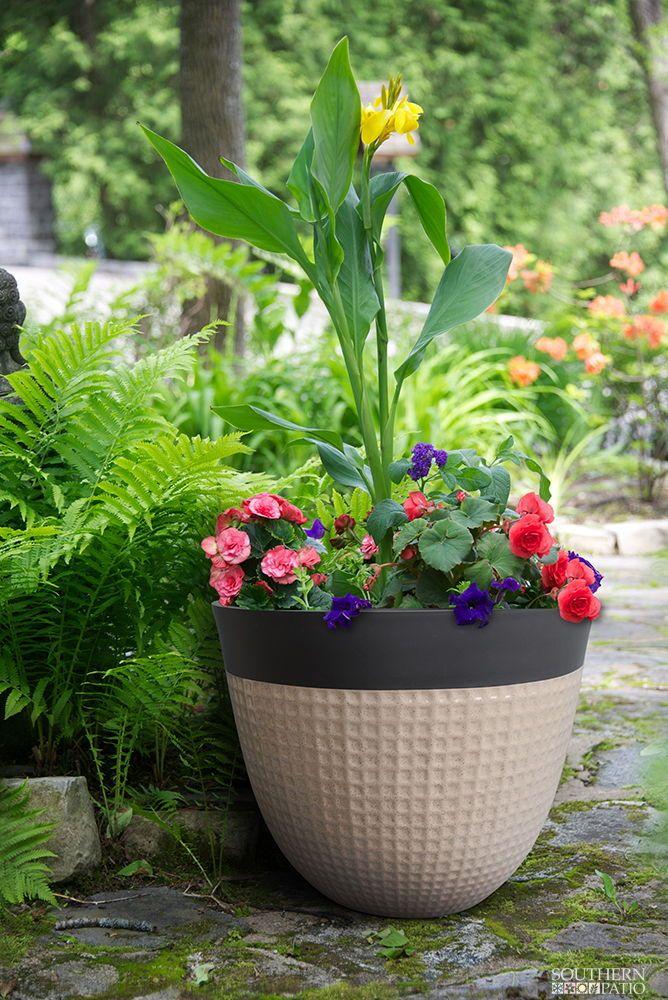 Ailani Resin Planter 2 Pack Resin Planters Flower Pots 400 x 300