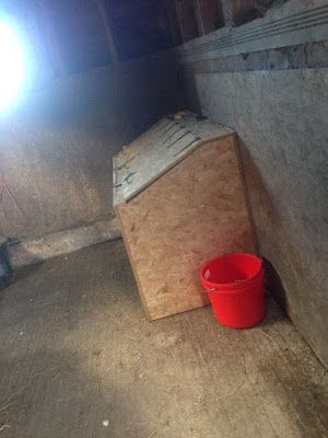 7 Things You Need in Your Feed Room! - The Rider's Reins