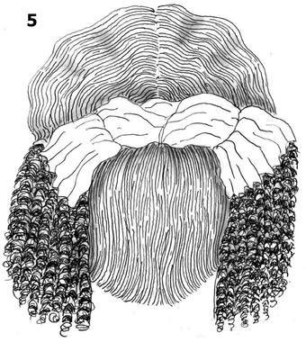 Epingle Sur 18th C Hair