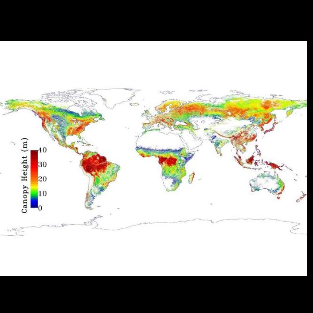 Height of earth's forests by NASA