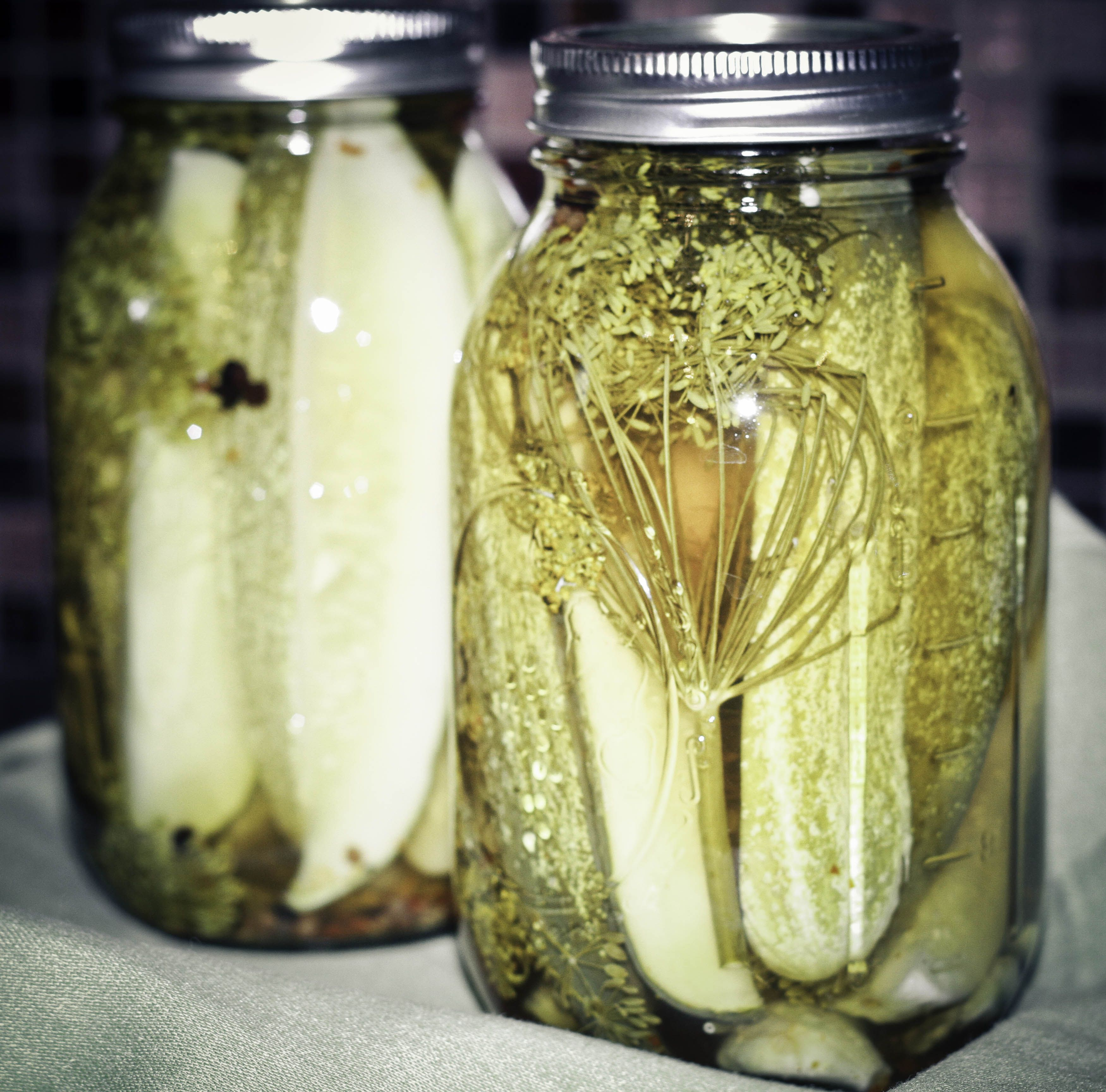How to make sour kosher dill pickles