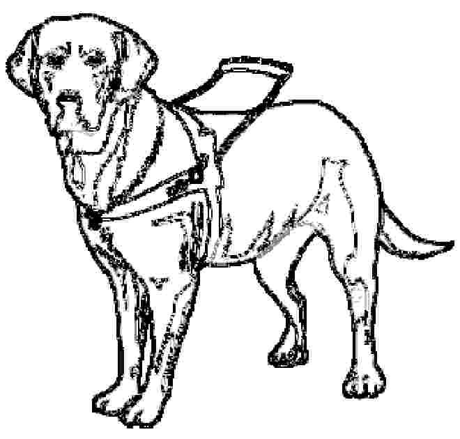 Dog Guide Coloring Pages