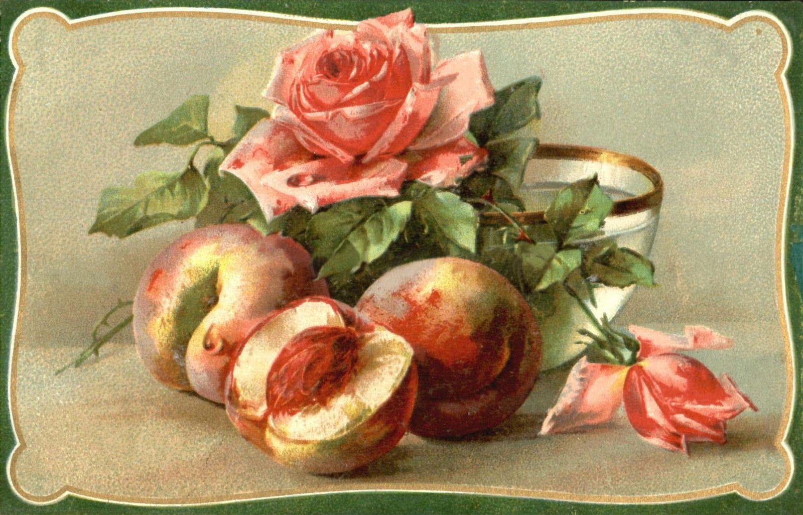 Открытка персик, добрым