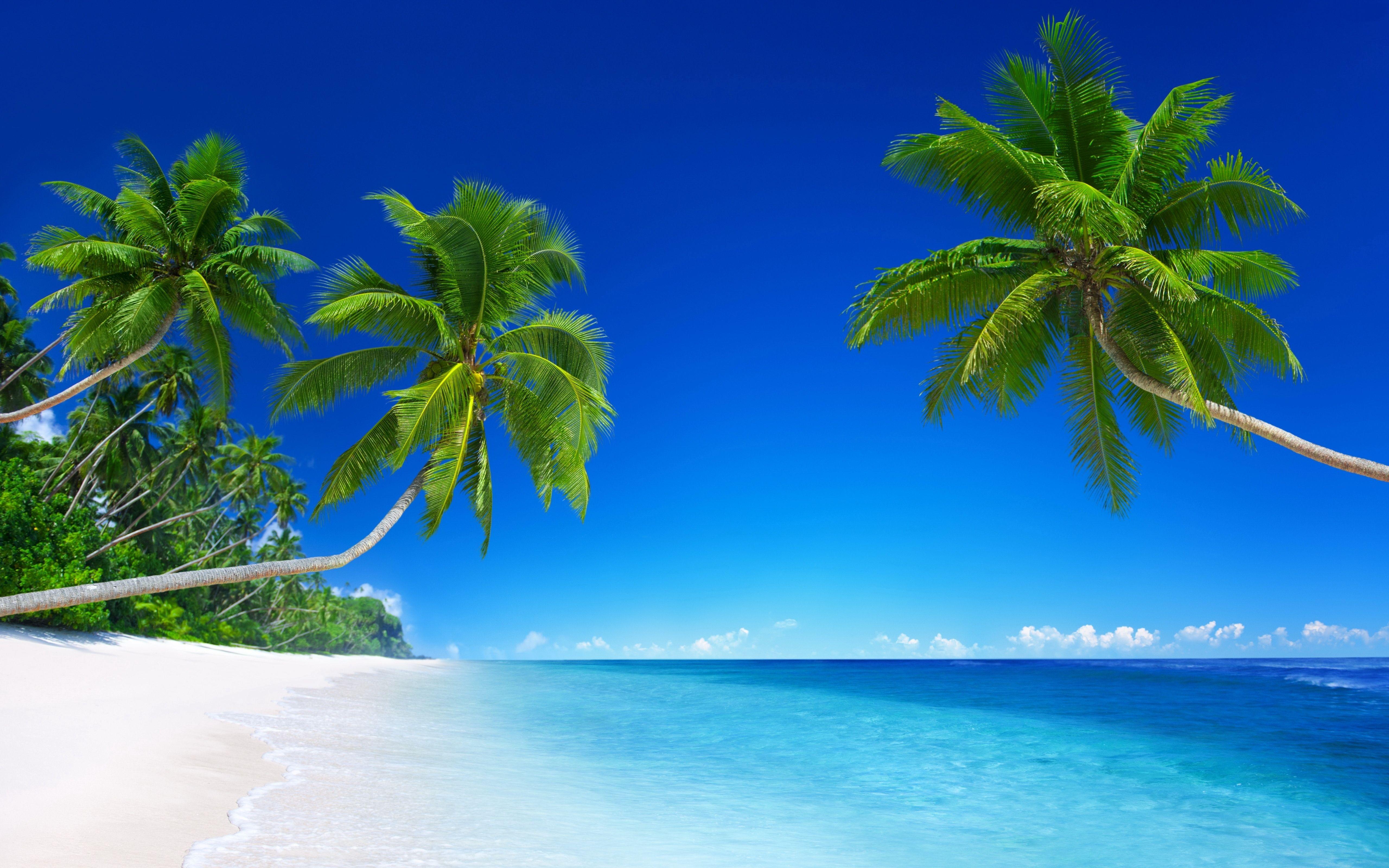 10 Best Tropical Beach Desktop Backgrounds Full Hd 1920 1080 For Pc Background In 2020 Beach Wallpaper Landscape Wallpaper Paradise Wallpaper
