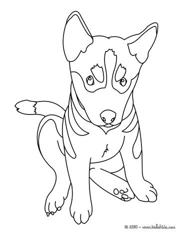German Shepherd Puppy coloring pages/Hand Embroidery