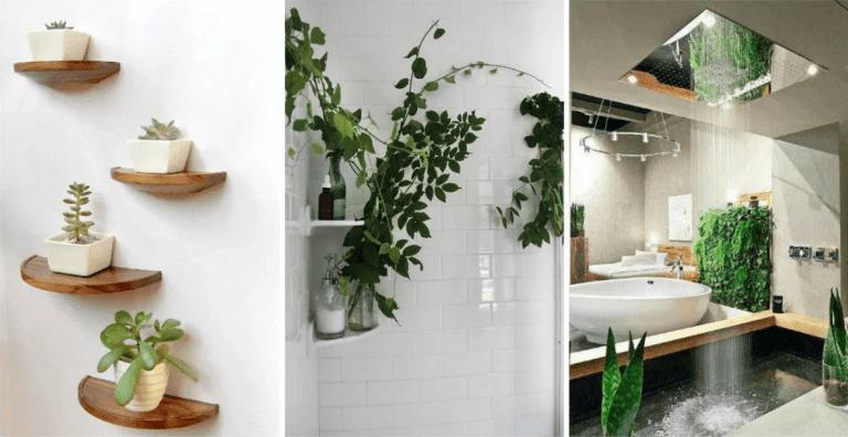 43 Zen Bathroom Decor Feng Shui Lucky Bamboo Silahsilah Com Best Bathroom Plants Bathroom Plants Shower Bathroom Plants