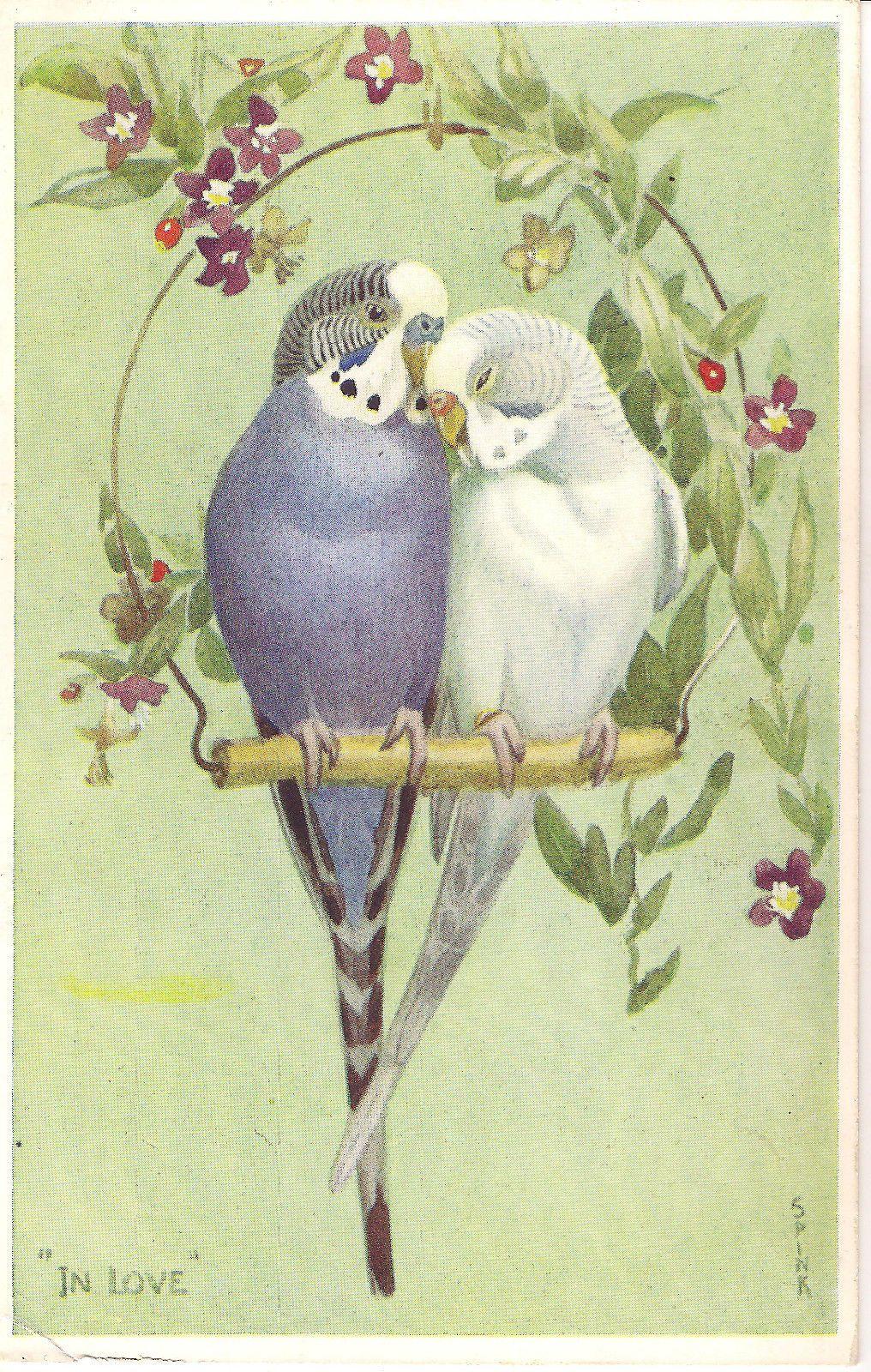 Lot Of 6 Parakeet Vintage Valentine S Quot Lovebird Quot Postcards