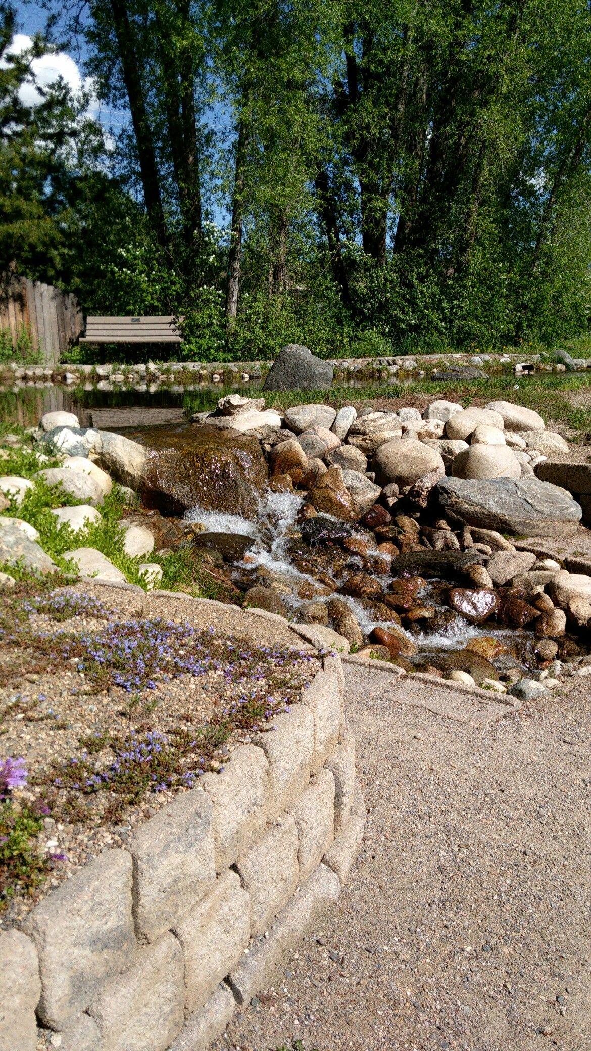 Steamboat botanic gardens