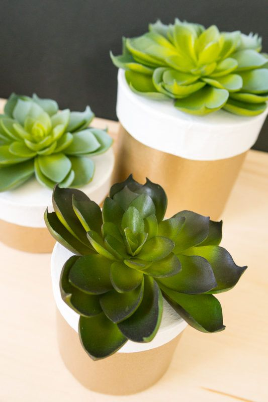 Looking for easy and eye-catching box ideas for gifts or mini storage? These modern paper mache boxes are decorated with darling faux succulents.