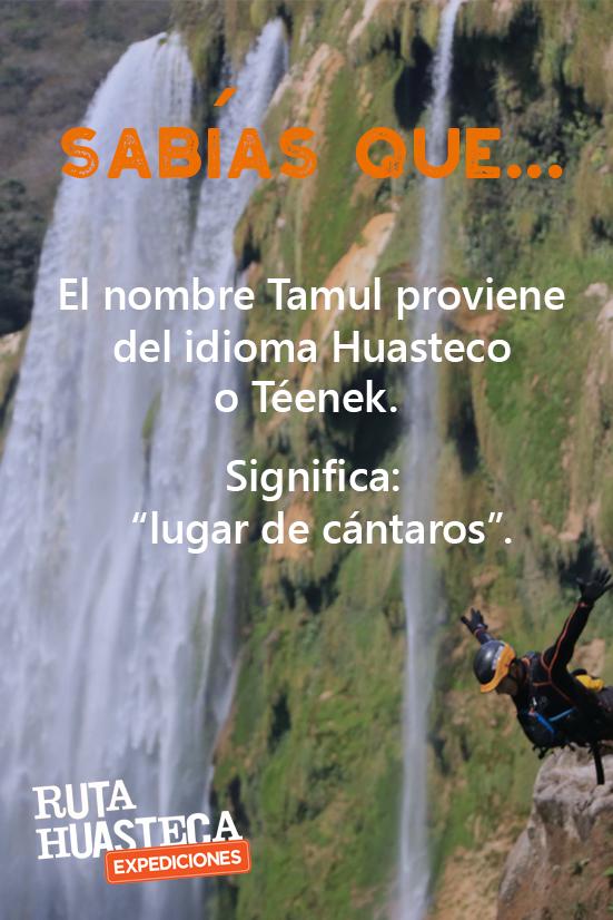 La zona de la Huasteca Potosina es una región con gran riqueza cultural, ven a conocer más sobre su historia y tradiciones además de hermosos paisajes. ¡Te encantará! #WeLoveAdventure www.rutahuasteca.com 01.800.543.7746 WhatsApp: 481.116.5900 email: info@rutahuasteca.com #RutaHuasteca #SLP #Ecoturismo #TurismoDeNaturaleza #VisitMéxico #Tours #TodoIncluido