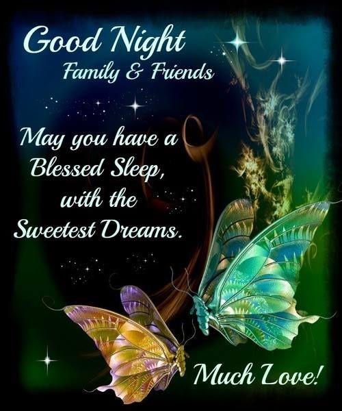 Good Night Essay