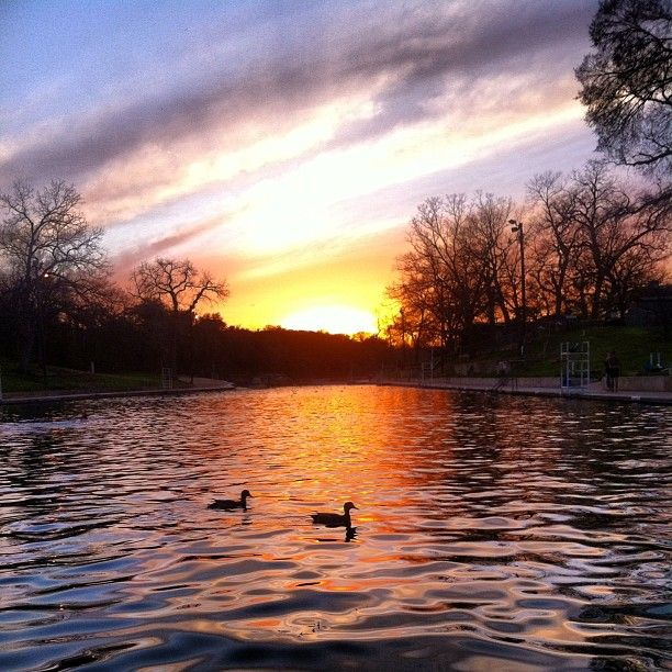 Sunset @ Barton Springs Pool #austin