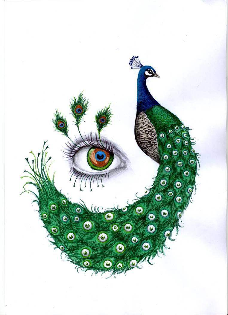 Peacock By Lachauvesourisdoree On Deviantart In 2020 Peacock Drawing Peacock Drawing With Colour Peacock Painting