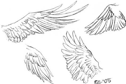Drawing Tutorials Wings Wings Drawing Wings Sketch Angel Wings Drawing