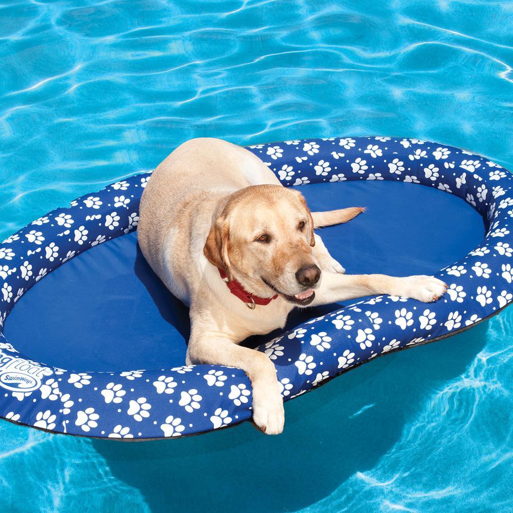Swim Ways Spring Float Large Paddle Paws Multi Colored In 2020 Dog Pool Floats Dog Pool Doggy