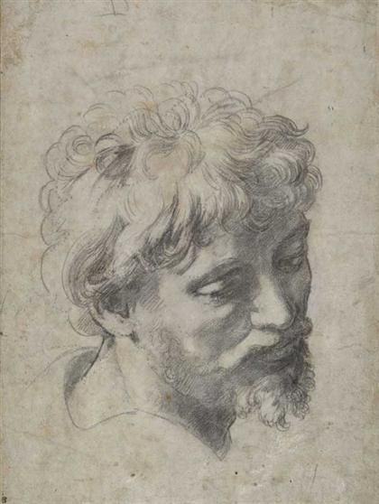 'Head of a Young Apostle', c.1519-20.  Raphael (1483-1520)