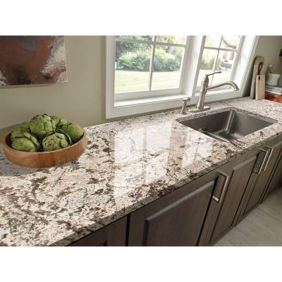 Stonemark 3 in. x 3 in. Granite Countertop Sample in Bianco Antico ...