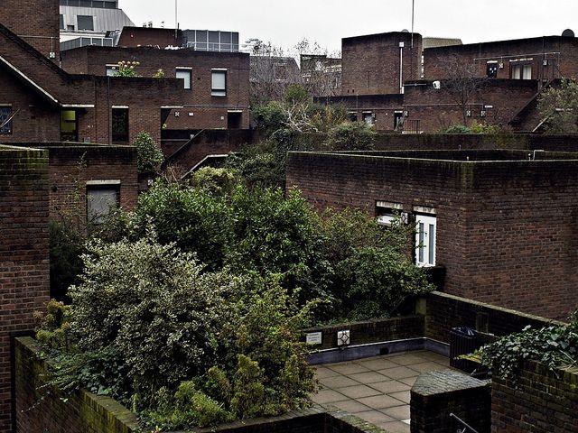 Garden Walk London: Odhams Walk