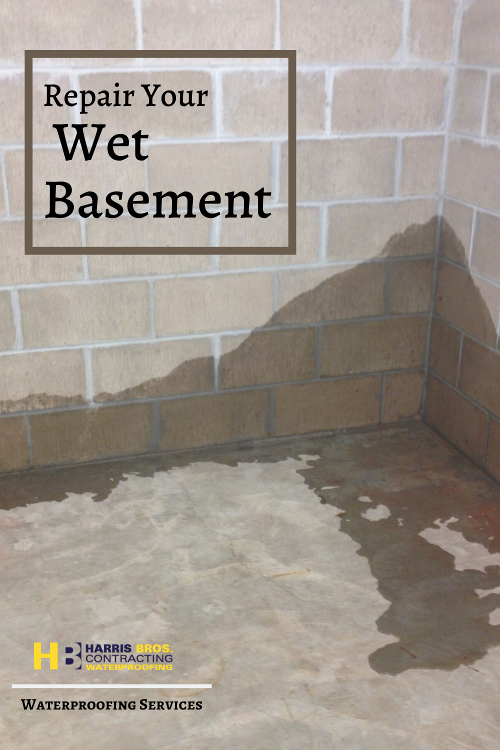 Wet Basement Smithville In 2020 Wet Basement Wet Basement Solutions Basement