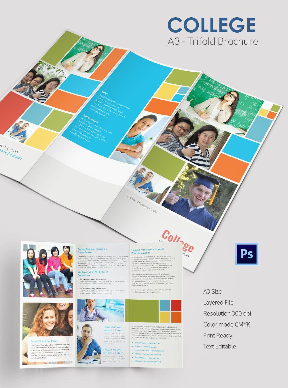 Elegant College Tri Fold Brochure Template – College Brochure