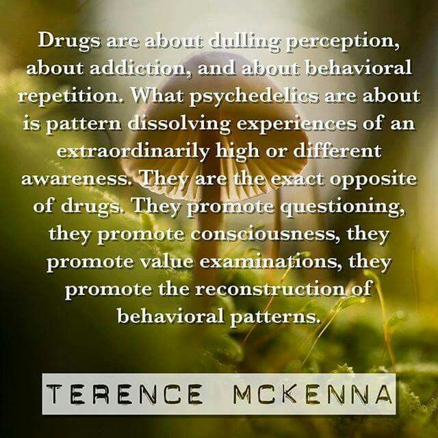 Terence McKenna | Psychedelic quotes, Terence mckenna, Words