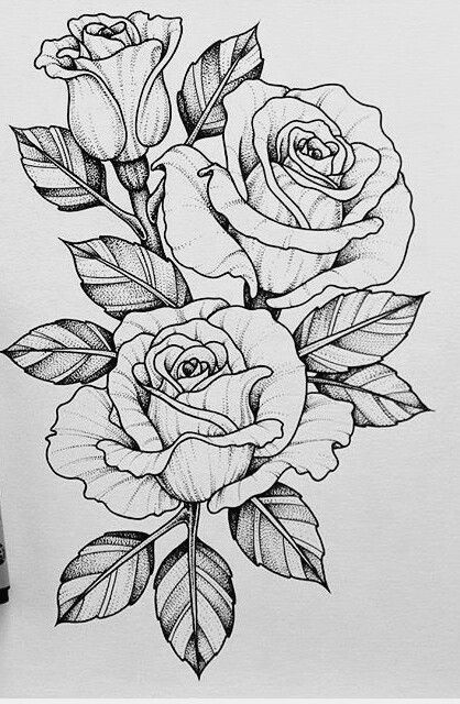 Tattoo Outlines Flowers Black And White: Pin By Charlotte Roy On Woodburning