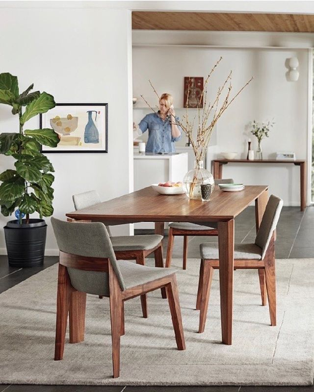 Dania Furniture Instagram Furniture Dining Chairs Dining