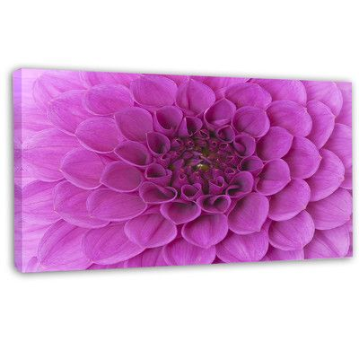 DesignArt 'Large Purple Flower and Petals' Graphic Art on Wrapped Canvas Size:
