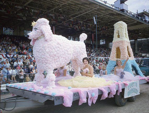 Vintage 1964 Pink Poodle on Parade Alden Erie by vintagephotos1900, $ 12.00