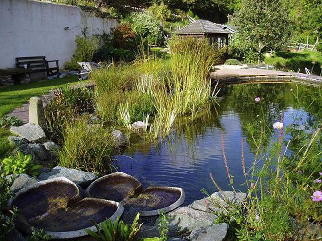natural swimming pools - Google Search