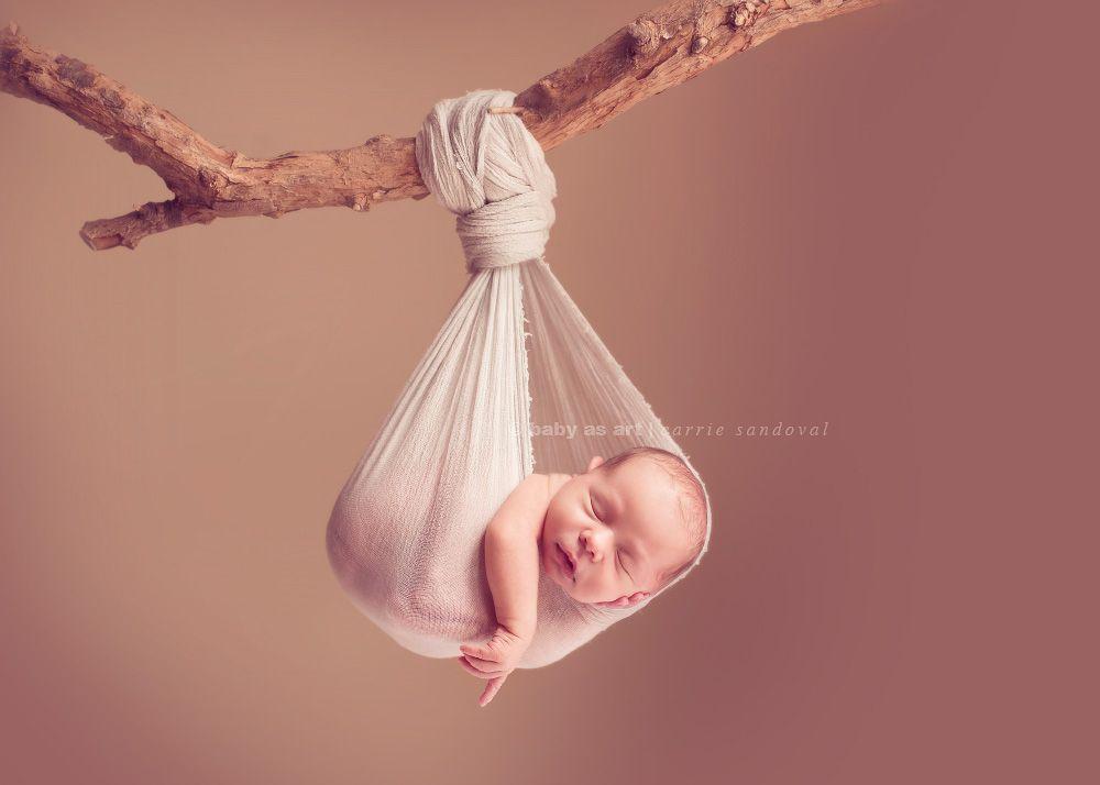 Newborn photographer baby posing in stork pouch