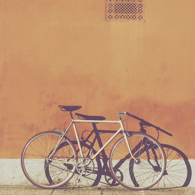 """]i love you Honey[  #honey #miele #bike #singlespeed #bolognapostcards #bologna #italy #whatitalyis #brooks #reedit"" Photo taken by @dvdprtto on Instagram, pinned via the InstaPin iOS App! http://www.instapinapp.com (06/28/2015)"