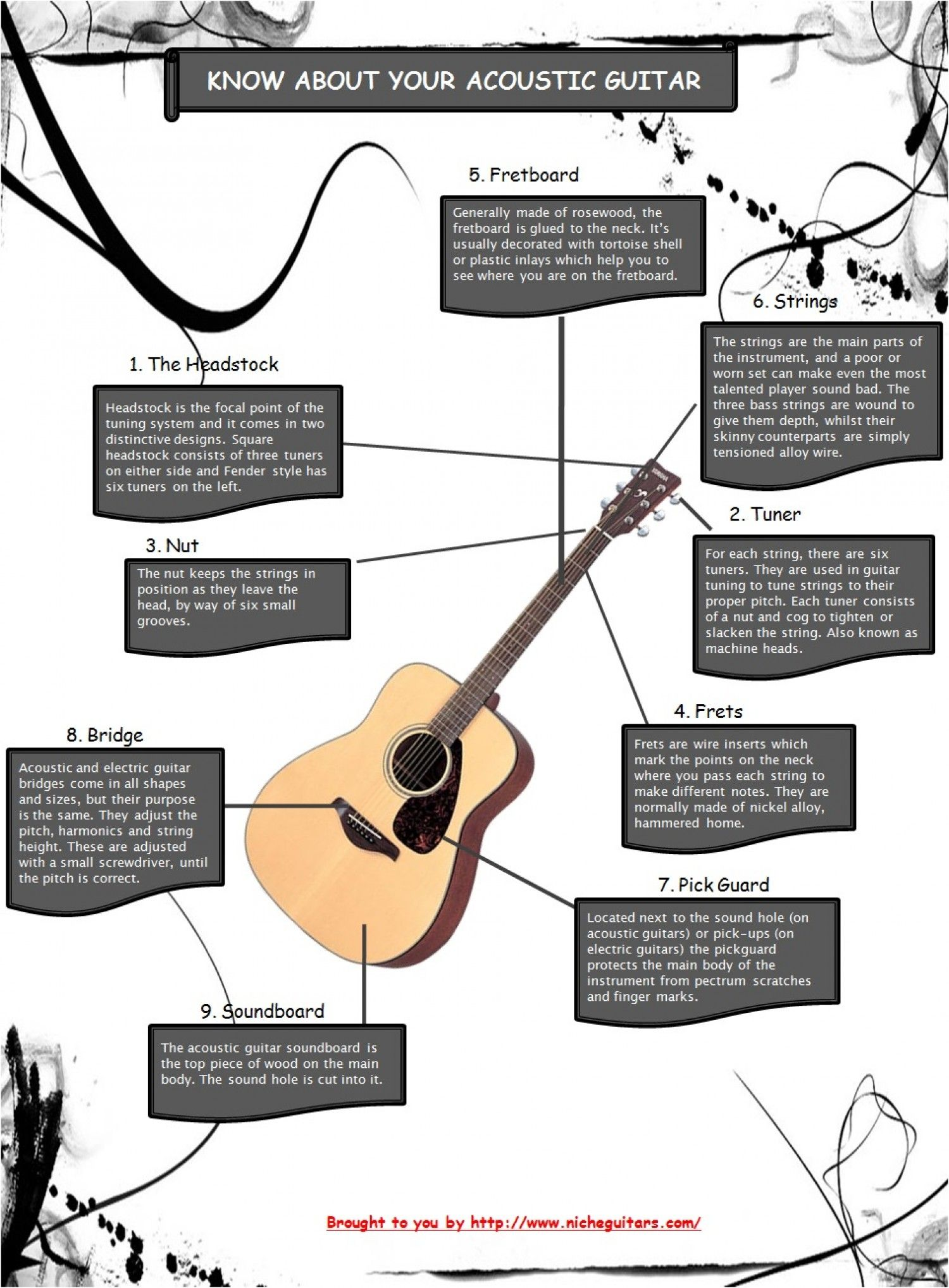 guitar infographic Google Search