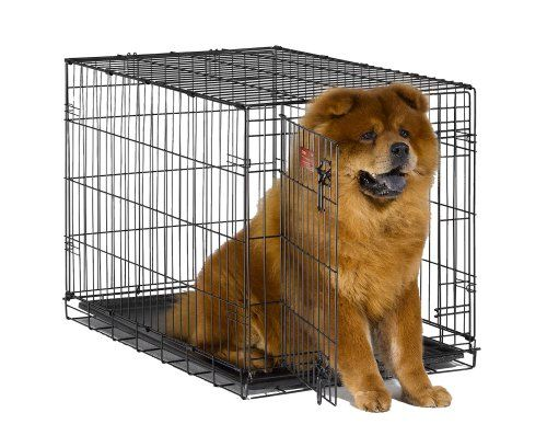 Midwest Icrate 36 Folding Metal Dog Crate W Divider Pan Folding Dog Crate Dog Cages Dog Crate