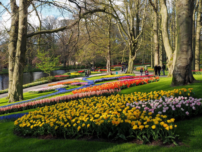 Keukenhof Gardens, Amsterdam, Netherlands: Dirk Visbach. | Flora ...