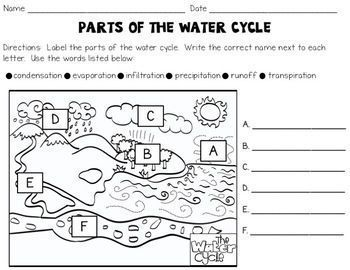 water cycle activities text evidence graphic organizers diagrams and more text evidence. Black Bedroom Furniture Sets. Home Design Ideas