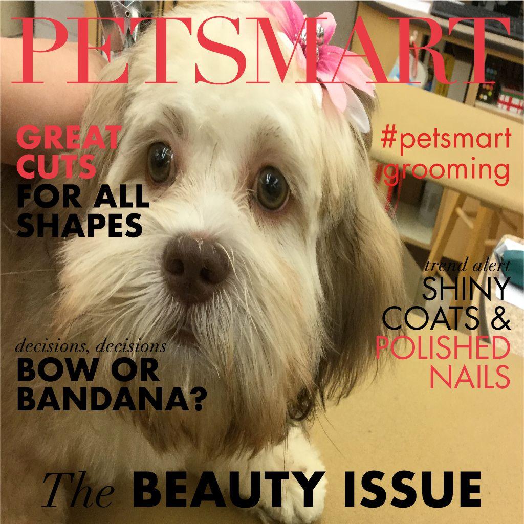 Here S My Pet Photo Animal Photo Petsmart Pets