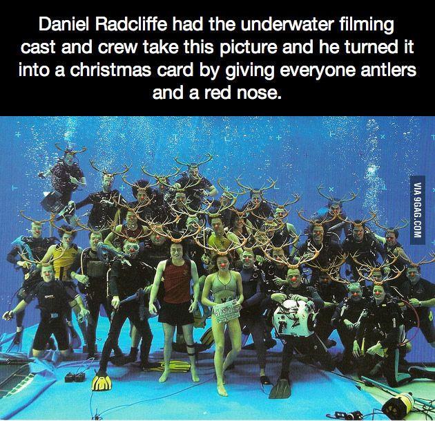 Daniel Radcliffe S Christmas Card Daniel Radcliffe Funny Fun