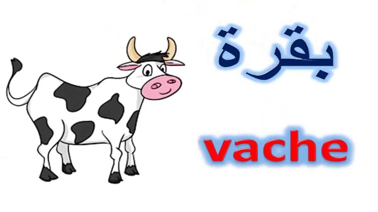 تعليم الحيوانات باللغة الفرنسية والعربية للاطفال Learn Animals In Fren Learning Arabic Learn French Learning