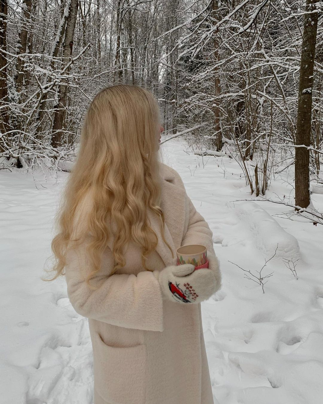 Alyona Alyonaa Y Posted On Instagram Jan 10 2021 At 9 01am Utc In 2021 Winter Photos Winter Aesthetic Winter Princess