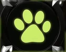 Resultado de imagen para chat noir simbolo