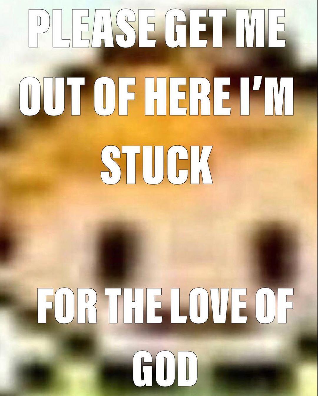 Meme Gods Love Memes God